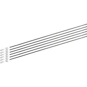 DT Swiss Spoke Kit for PR 1600 Dicut 21mm